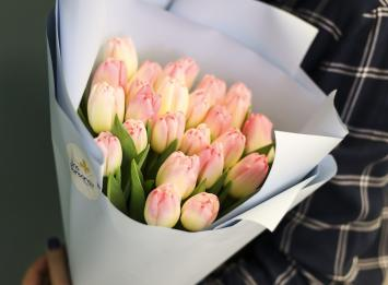 25 нежных тюльпанов цена