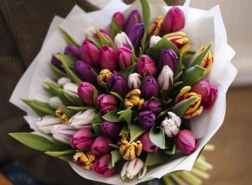 51 весенний тюльпан цена