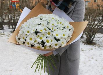 25 кустовых хризантем цена