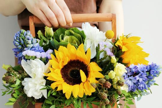 цветы в ящике цена