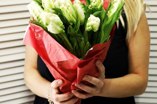 11 пионовидных тюльпанов цена
