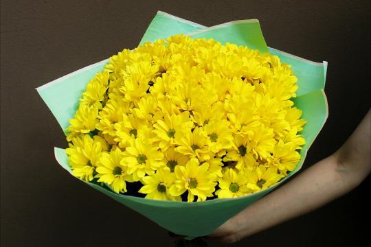 желтые хризантемы цена