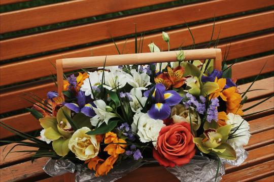 цветы в деревянном ящике недорого