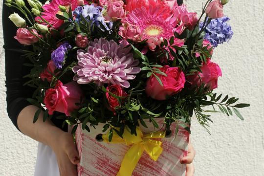 цветы в ящике недорого