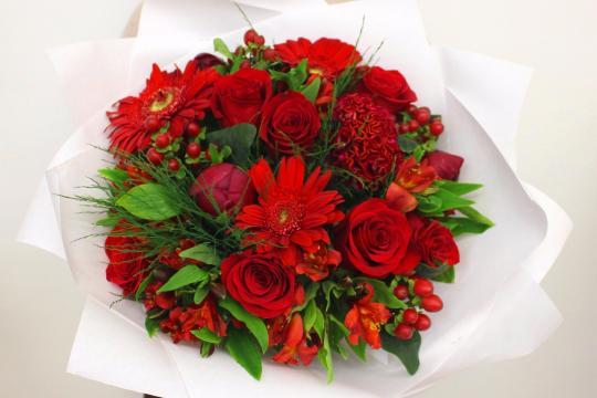розы и пионы недорого