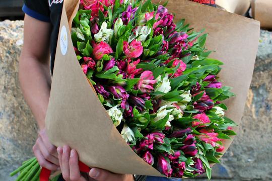 Цветы альстромерии купить