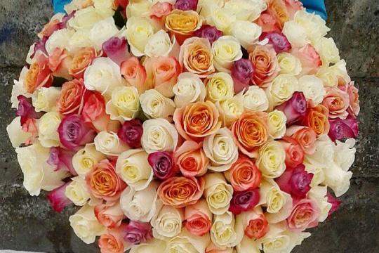 Огромный букет роз фото