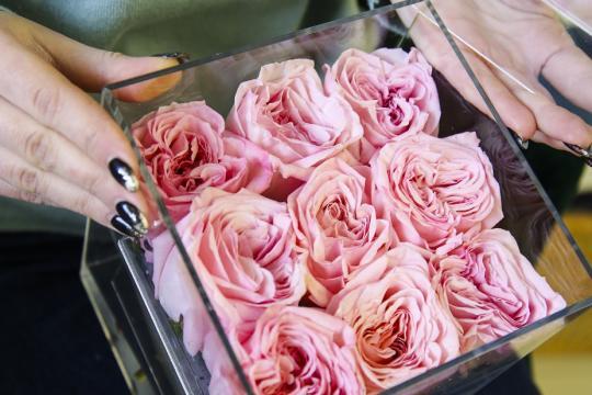 9 пионовидных роз в прозрачной коробочке цена