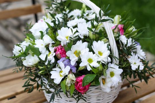 корзина с хризантемами и тюльпанами цена
